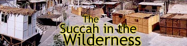 The Succah in the Wilderness - Rabbi Mendel Weinbach